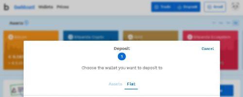 Bitpanda Fiat Deposit